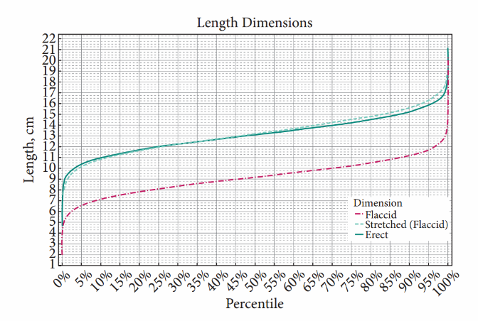 dimensiunea penisului pentru fată erecție pierdută sau slabă