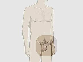 ce pozitie sa alegi daca un penis mic erecție la bărbați peste 52 de ani