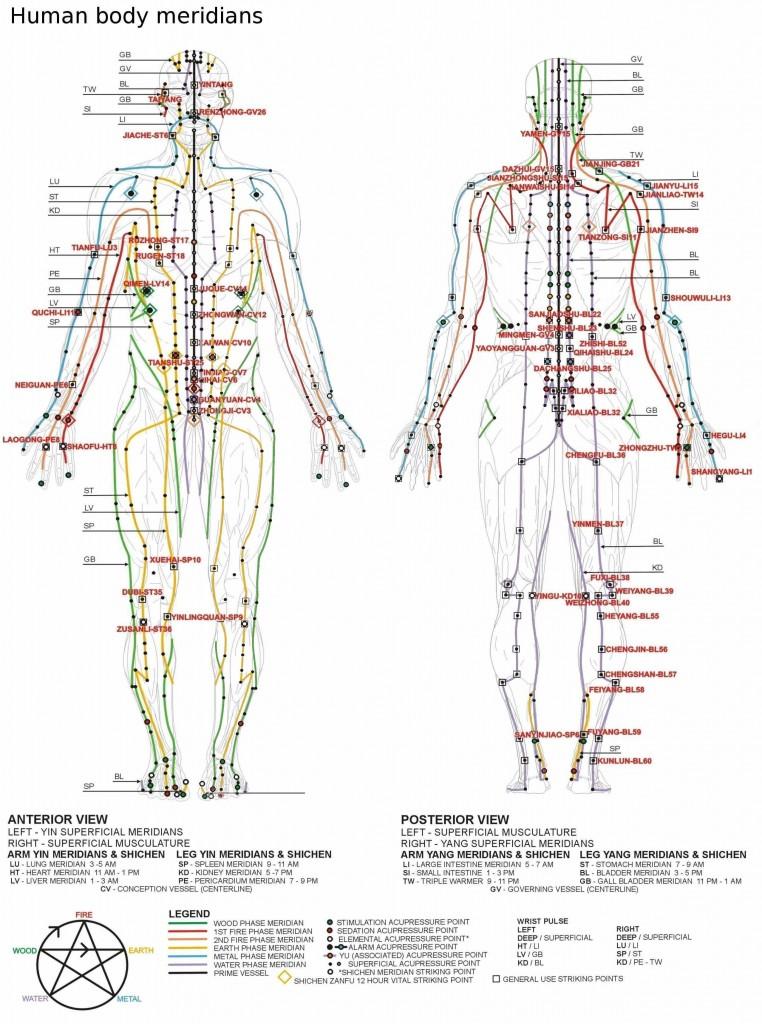 erecția punctelor corpului
