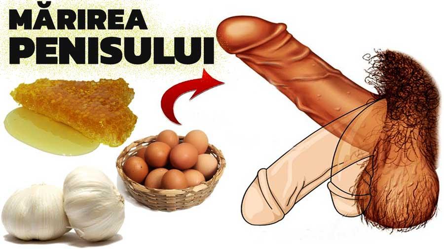 penis moale erectie proasta mărirea penisului de către albină