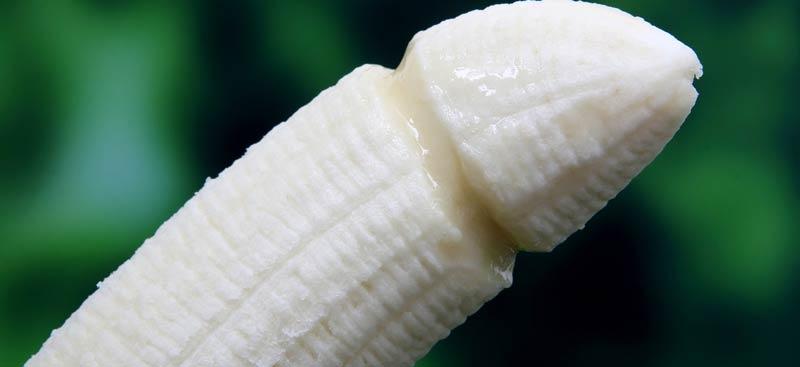 letargie în penis organul genital masculin și erecția acestuia